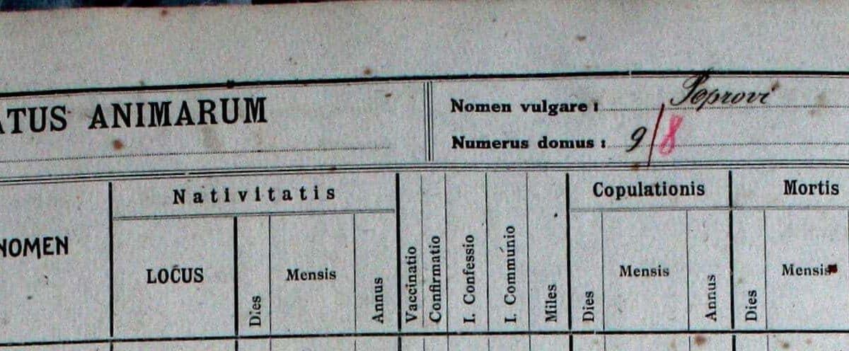 Hišna imena Vipavske (10): Ravne