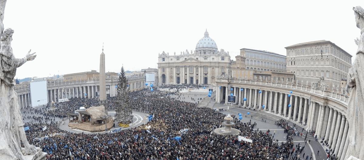 Danes bo slovenska smreka v Vatikanu osvetljena – videlo jo bo na milijone ljudi