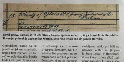 ¿Qué significa el apellido Bernik?