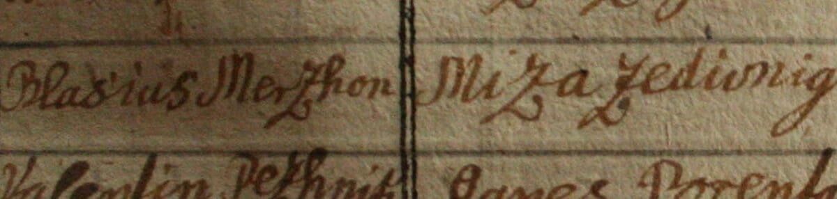 O izvoru priimka Mrčun, Merčun, Merčon in Marčun
